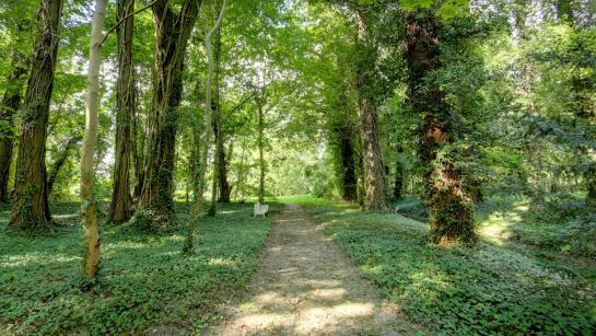 Park vom Schloss Blankensee